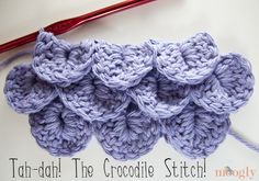 How to Crochet the Crocodile Stitch: Video and Photo Tutorial - moogly