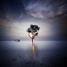 Laguna, Banten. Indonesia  The Light for Momby Chaerul-Umam