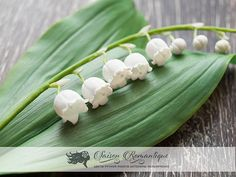 Lily of the valley made from air dry clay. Price set for one stem with 6 buds and 5 flowers on it. Height: ~6-7 inches (15-19 cm) and can be variety.  All petals are soft, flexible like a real flower. Lily of the valley made from air-dry clay from start to end by my hands, petal by petal. No two pieces will be exactly alike. Like a real flowers! Not fragile! They are very lightweight and beautifully semi-transparent.  ♥ All of my items are designed and carefully handmade by me. ♥  ♥ If you…