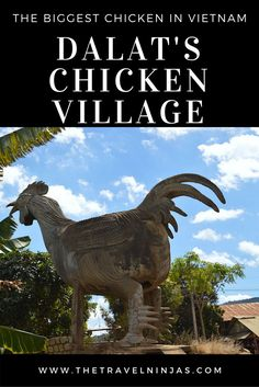 Read about our odd yet memorable visit to the Chicken Village outside Dalat, where we saw the biggest chicken (statue) in Vietnam. via @thetravelninjas