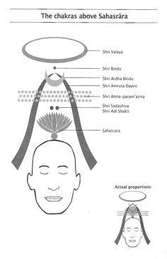 Chakras above Sahasrara 7 Chakras Meditation, Sahaja Yoga Meditation, Kundalini Yoga, Mindfulness Meditation, Chakra Mantra, Chakra Healing, Chakra Chart, Rose Croix, Les Chakras