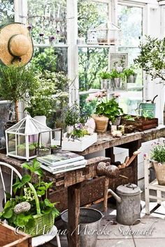 🌟Tante S!fr@ loves this📌🌟Want to know how to build a potting bench? Our potting bench plan will give you a functional, beautiful garden potting bench in no time! Potting Bench Plans, Potting Tables, Potting Sheds, Garden Shop, Dream Garden, Garden Pots, Home And Garden, Garden Benches, Greenhouse Shed