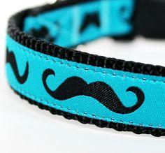 Mustache Dog Collar / Black Mustache on Teal Blue / Pet Accessories / Handmade / Adjustable. $16.00, via Etsy.