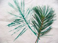 Stamping Pine Needles and Pine Cones onto Natural Dyed Fabric