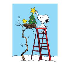 Spread holiday cheer, a bit of humor and a lot of nostalgia with this set of Peanuts Christmas cards featuring Snoopy.