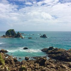 #seals #ocean #newzealand #westcoast #beautifulisland #island #nz #lostplaces #lostworld #backpackingnz #greatoceanroad by minzol21