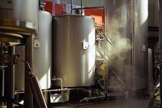 Elav Brewery - Italian Craft Brewery