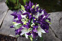 Irises and white lilies