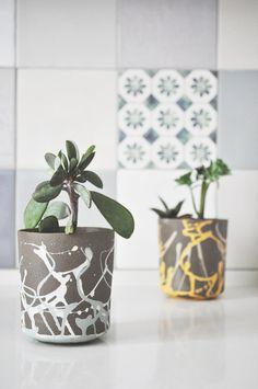Plant Pot Cactus Planter Succulent Planter Ceramic por Yahalomis