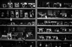 A shelf filled with old film cameras at an Antique shop I went to.