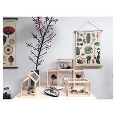FLO atelier botânico. Loja botânica conceito, localizada na Vila Madalena.