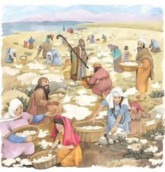 """Eighth Sunday After Epiphany Matthew (NRSV) The teaching of Christ : trust in God """"No one can serve two masters; for a slave. Bible Crafts, Bible Art, Bible Verses, Kids Sunday School Lessons, Bible Study For Kids, Bible Illustrations, Moise, Bible Pictures, Biblical Art"""