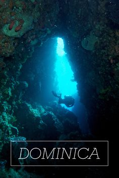 Dominica | Dive deep down to incredible depths and explore the rare marine life and natural monuments that date back to Dominica's original volcanic origin.