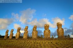 The Moai at Ahu Tongariki on Rapa Nui (Easter Island). This alter was restored in the 1990's by archeologists Claudio Cristino and Patricia Vargas.