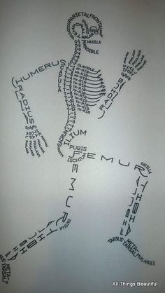 All Things Beautiful: Human Biology: Bones and the Skeletal System