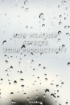 How weather can affect your mood and productivity www.levo.com