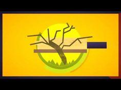 Help Save Cricket - YouTube
