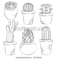 Collection of vector cactuses in flower pot. Isolated objects.