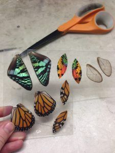 casting butterfly wings in resin