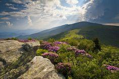 Hike the 2,180 mile Appalachian Trail.