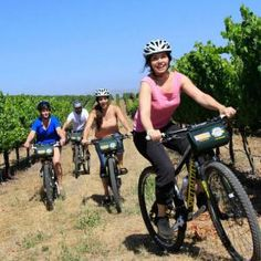 Sonoma Valley Bike Tours   Discover all things #SonomaCounty at Sonoma.com