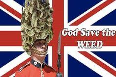 Marijuana in England #marijuana #weed #420 #ganja #fashion #england