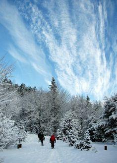 Winter Walking – Sault Ste. Marie, Ontario – Ann J P