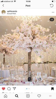 Beautiful blossom tree centre piece wedding decor