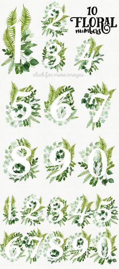 10 Watercolor Floral Numbers. Illustrations