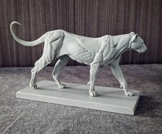 Lion Anatomy, Animal Anatomy, Anatomy Drawing, Anatomy Sculpture, Sculpture Art, Animal Sketches, Animal Drawings, Anatomy Poses, Lion Art