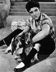 Elvis with Basset Hounds