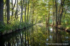 #Natur - Erlebnis - #Spreewald www.spreewald-hotel-stern.de