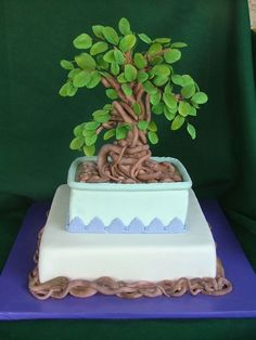 The man likes Bonsai trees and his wife wanted to surprise him with a specil cak… – Lace Wedding Cake Ideas Pretty Cakes, Beautiful Cakes, Amazing Cakes, Cupcakes, Cupcake Cakes, Fondant Cakes, Easy Birthday Desserts, Tree Cakes, Specialty Cakes
