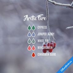 Arctic Fire - Essential Oil Diffuser Blend