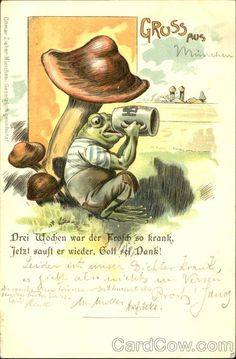 Gruss Aus - Frog Drinking Beer Frogs