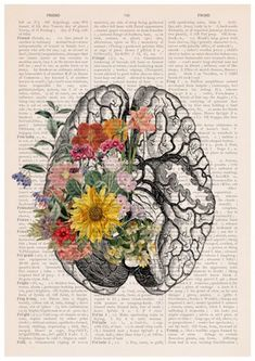 Springtime brain, Colorful flowers from Brain. Poster art print. This print came in A3 size nice weight canvas textured paper with REPRODUCTION BOOK PAGE background. We print an enlarged version of the image onto an A3 page along with an overprint of text from an antique book page. The image