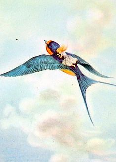 Illustration for Thumbelina by Tasha Tudor.