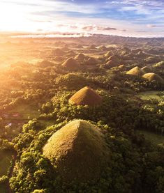 The delightful Chocolate Hills in the Philippines. Chocolate Hills, Famous Chocolate, Glowworm Caves New Zealand, Belize, Filipino, Dark Hedges, Great Blue Hole, Tunnel Of Love, Cebu City