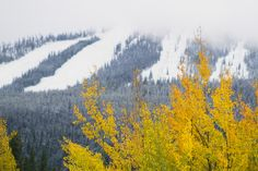 First Snow of the Season Falls in Mountain West and Upstate New . Weather News, Weather Report, Weather Forecast, Winter Park Resort, Weather Underground, First Snow, Weather Conditions, Seasons