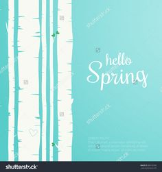 Hello Spring Lettering. Spring Birch Forest Background. Colorful Template Greeting Card Stock Vector Illustration 389135950 : Shutterstock