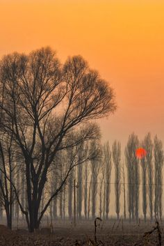 Sunset in Taiyuan city, Shanxi province, China  (by Alan Song on 500px)