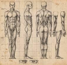 """Résultat de recherche d'images pour """"пропорции человека для лепки"""""""