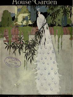 House & Garden Mag., white peacock