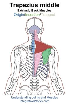 Understanding Trigger Points - Sore shoulder from strap of bag or lifting overhead