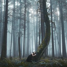 Journey Of Existence Elizabeth Gadd Photography Pinterest - Awe inspiring landscape photography elizabeth gadd