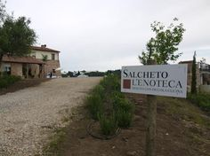 Photo of Salcheto