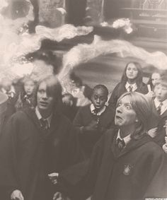 Fred & George. I love them so much!