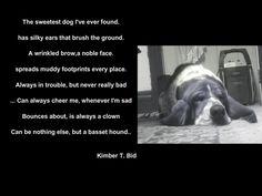 The Basset poem