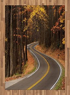 Fall Area Rug by Ambesonne, Curvy Roadway Through the Forest Great Smokey Mountains Change of Seasons Traveling, Flat Woven Accent Rug for Living Room Bedroom Dining Room, 5.2 x 7.5 FT, Multicolor