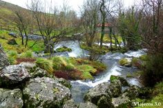nacimiento del río Gándara Cantabria